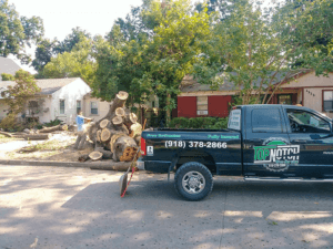 Brookside Tree Removal 5