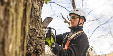 Tulsa Tree Services 19